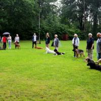 Sommerfest2019_0515